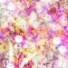 水原希子、Ravijourのパッド入りブラジャーで谷間を作ったりバストが大きくなるクリームを塗ったり