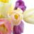【鈴木えみの愛用コスメ】ファンデーション・メイクアップ化粧品編の最新版(2018年4月)