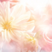 【皆藤愛子のメイク】色白のかわいい美肌を作るベース化粧品と日焼けを防ぐテクニック